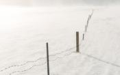 gevangen in de sneeuw