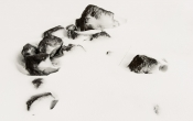 Rotsen steken door de sneeuw